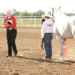 Fair Horse 2