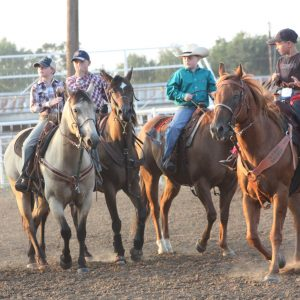 Fair Youth Ranch Rodeo